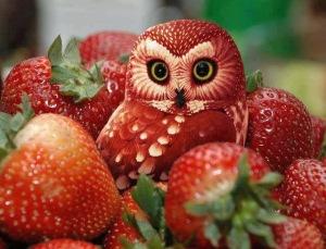 fruit art strawberries
